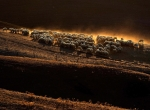 Max Rossi:Reuters.jpg